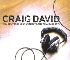 Craig_David_-_You_Don't_Miss_Your_Water_('Til_The_Well_Runs_Dry)